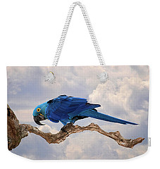 Hyacinth Macaw Weekender Tote Bag by Wade Aiken
