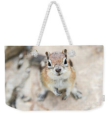 Hypno Squirrel Weekender Tote Bag by Chris Scroggins