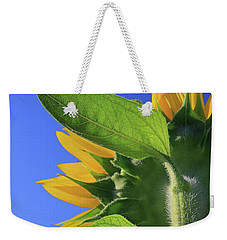 Weekender Tote Bag featuring the photograph I Am Not Looking At You by Christopher McKenzie
