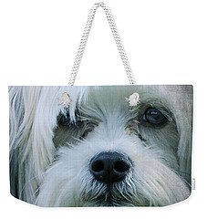 I Can Explain - Dog Mania Print Weekender Tote Bag