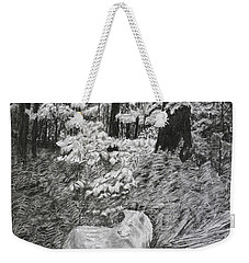 I Can't Find The Rabbit Weekender Tote Bag