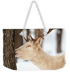 I Love This Tree Weekender Tote Bag
