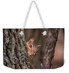 Weekender Tote Bag featuring the photograph I See You by Susan Rissi Tregoning