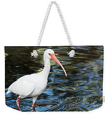 Ibis In The Swamp Weekender Tote Bag by Kenneth Albin