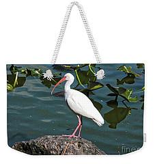 Ibis Rock Weekender Tote Bag by Carol Groenen