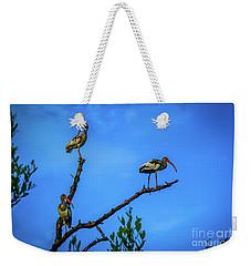 Ibis Trio Weekender Tote Bag by Tom Claud