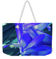 Weekender Tote Bag featuring the photograph Ice Cold Christmas Cactus Flower by Aimee L Maher Photography and Art Visit ALMGallerydotcom