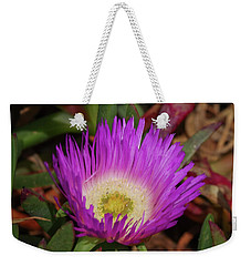 Weekender Tote Bag featuring the photograph Ice Plant Flower by Adria Trail