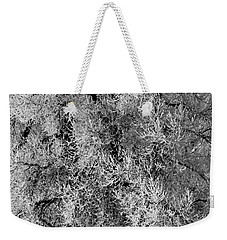 Weekender Tote Bag featuring the photograph Iced Cottonwoods by Colleen Coccia