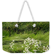 Weekender Tote Bag featuring the photograph Icelandic Daisies by KG Thienemann