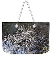 Ice Tree Sentinel Weekender Tote Bag