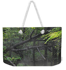 Weekender Tote Bag featuring the photograph If A Tree Falls In The Woods by Skip Willits