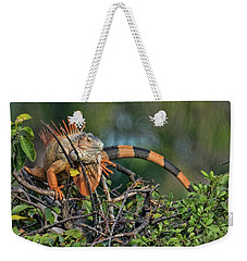 Weekender Tote Bag featuring the photograph Iggy by Don Durfee
