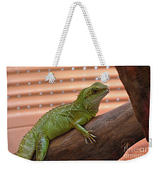 Iguana Balancing On A Tree Branch Weekender Tote Bag by DejaVu Designs
