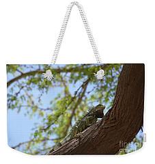 Iguana Climbing Up A Tree Trunk Weekender Tote Bag by DejaVu Designs
