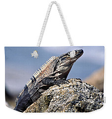Weekender Tote Bag featuring the photograph Iguana by Sally Weigand