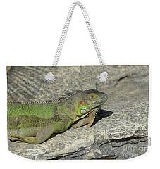 Iguana Warming In The Sunshine Weekender Tote Bag by DejaVu Designs