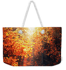 Illuminated Forest Weekender Tote Bag by Wim Lanclus