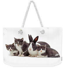 I'm Bun Of The Family Weekender Tote Bag
