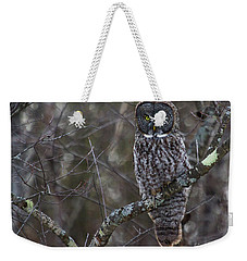 I'm Hungry- Great Gray Owl Weekender Tote Bag