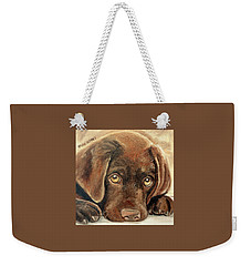 I'm Sorry - Chocolate Lab Puppy Weekender Tote Bag
