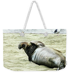 Weekender Tote Bag featuring the photograph Im Too Sexy by Anthony Jones