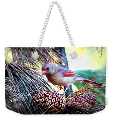 Img_0311 - Northern Cardinal Weekender Tote Bag