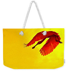 Img_2804 - Version 4 Weekender Tote Bag
