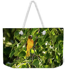 Immature Baltimore Oriole Weekender Tote Bag
