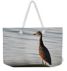 Immature Black-crowned Night-heron Mt Sinai New York Weekender Tote Bag by Bob Savage