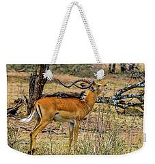 Impala On The Serengeti Weekender Tote Bag