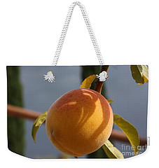 Weekender Tote Bag featuring the photograph Impeach The Shadow For It Knows Not by Brian Boyle