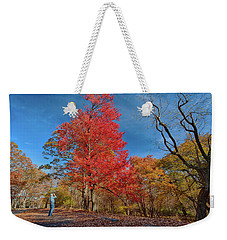 Weekender Tote Bag featuring the photograph In Awe Of Nature by Lara Ellis