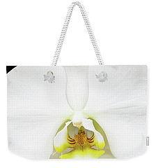 Weekender Tote Bag featuring the photograph In Black And White by Jessica Manelis
