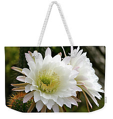Weekender Tote Bag featuring the photograph Cactus Blossoms by Melanie Alexandra Price