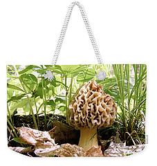 In Hiding - Morel Mushroom Weekender Tote Bag by Angie Rea