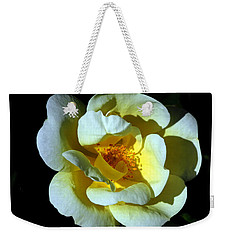 Weekender Tote Bag featuring the photograph In Light by Lynda Lehmann