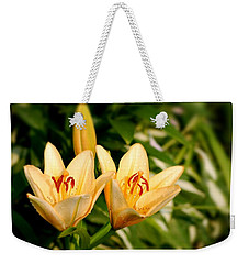 Weekender Tote Bag featuring the photograph In The Beginning by Angie Tirado