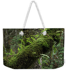 Weekender Tote Bag featuring the photograph In The Cool Of The Forest by Mike Eingle