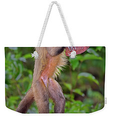 In The Kitchen Weekender Tote Bag by Tony Beck