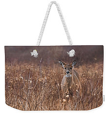 Weekender Tote Bag featuring the photograph In The Meadow by Robin-Lee Vieira