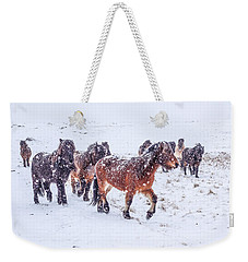In The Storm 2 Weekender Tote Bag