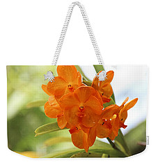 Weekender Tote Bag featuring the photograph In This World by Michiale Schneider