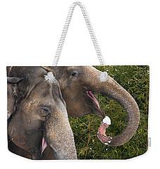 Indian Elephants Eating Snow Weekender Tote Bag