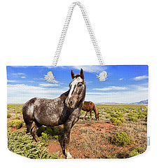 Indian Horse In The Desert Weekender Tote Bag