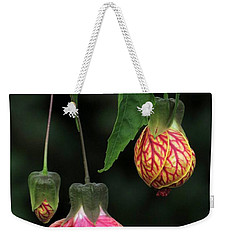 Indian Mallow Weekender Tote Bag