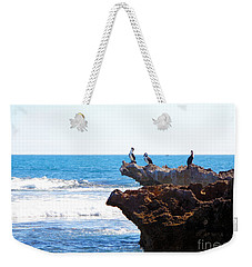 Indian Ocean Birds Resting On Rocks Weekender Tote Bag
