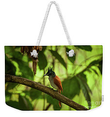 Indian Paradise Flycatcher Weekender Tote Bag