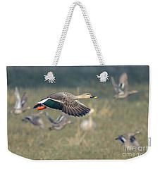Indian Spot-billed Duck 01 Weekender Tote Bag