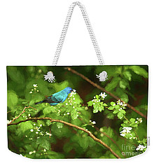 Indigo Bunting And Black Berry Blooms Weekender Tote Bag by Darren Fisher